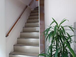 ゴギ(片岡)ビル階段